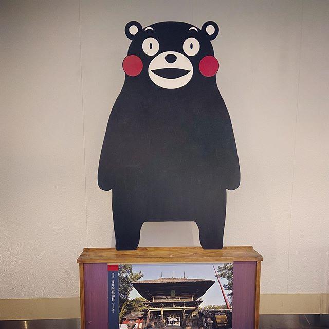 #KMM #くまモン #龍の家